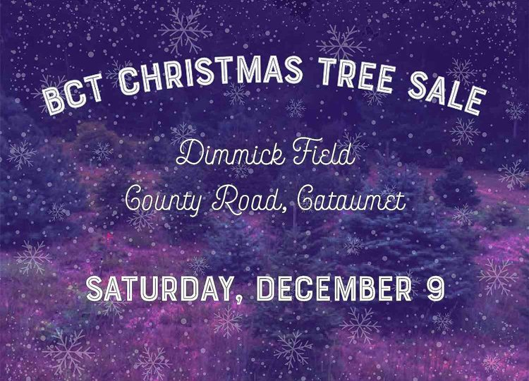 BCT Christmas Tree Sale 2017